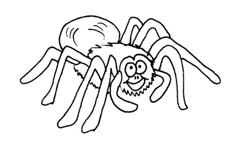 Happy Tarantula Coloring Pages