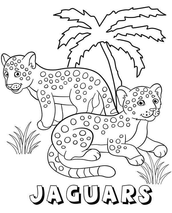 Jaguar Coloring Pages Best Coloring Pages For Kids