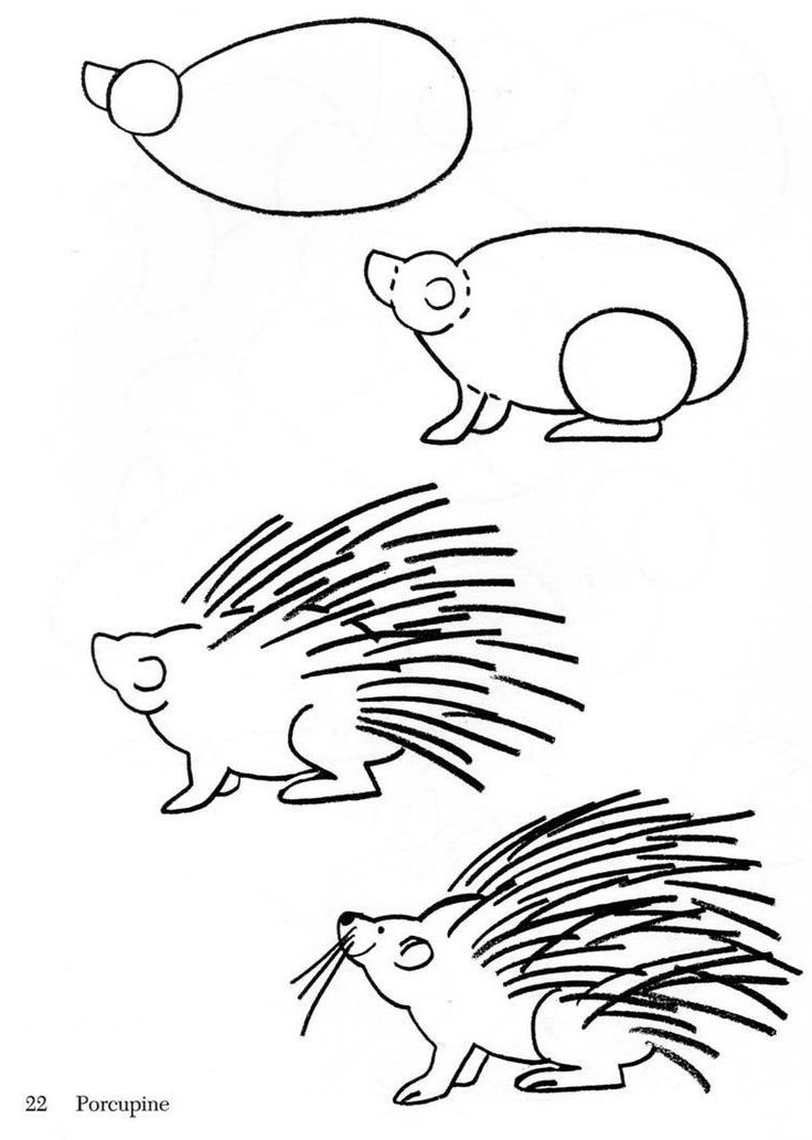 Draw A Porcupine Sheet