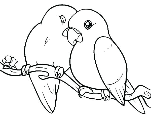 Parakeets In Love Coloring Page