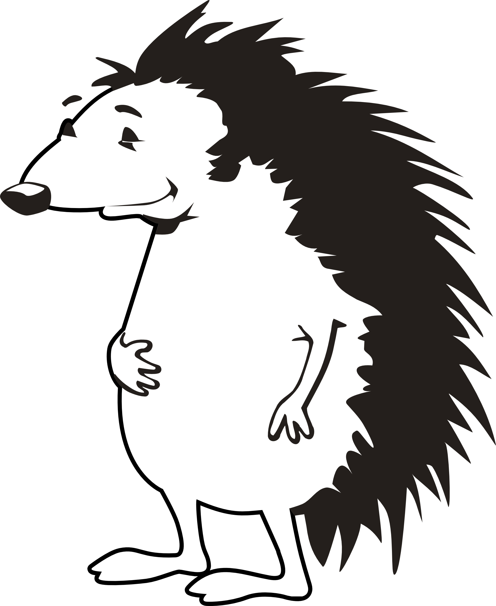 Porcupine Coloring Page Printable