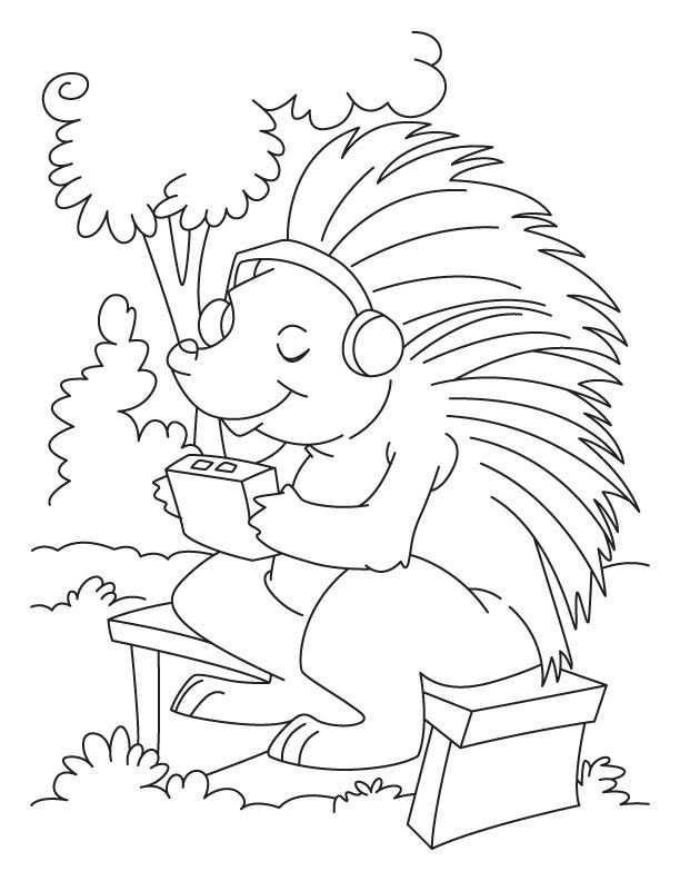 Porcupine Listening To Music Coloring Page