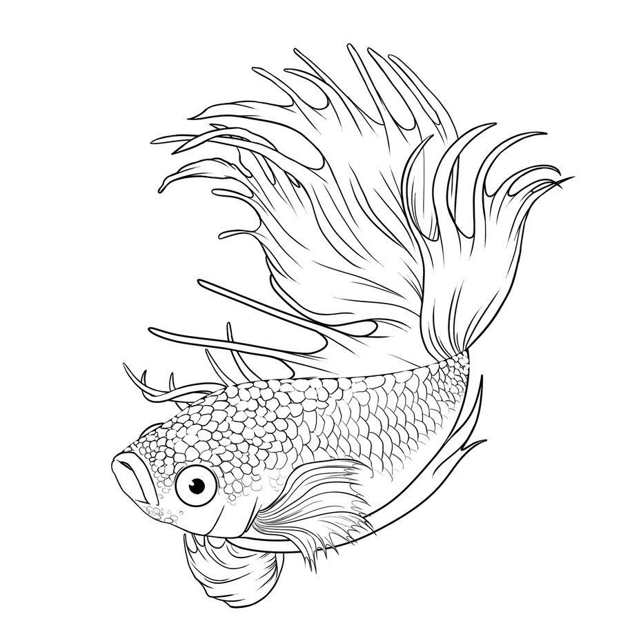 Realistic Betta Fish Coloring Pages