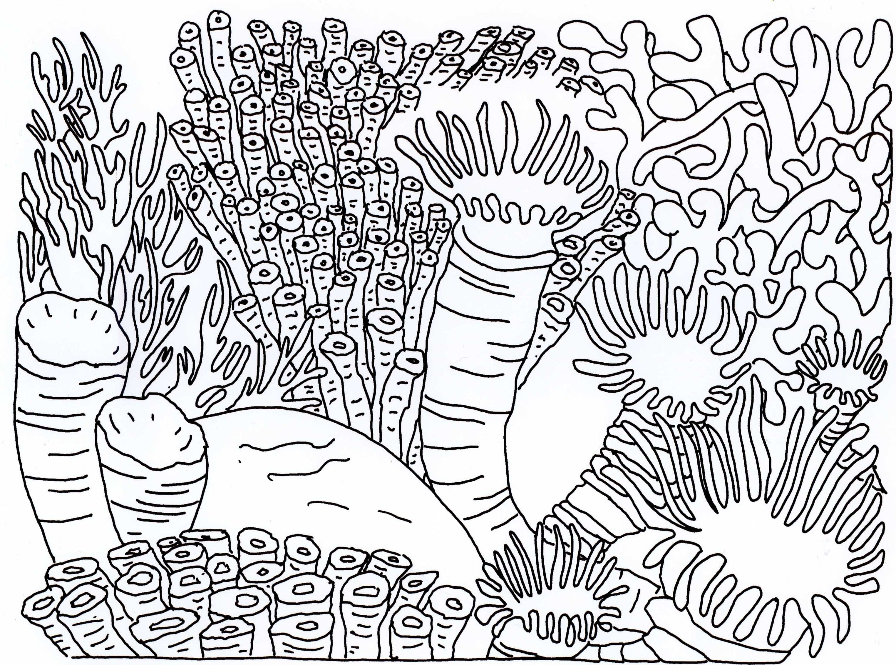 Sea Coral Coloring Pages