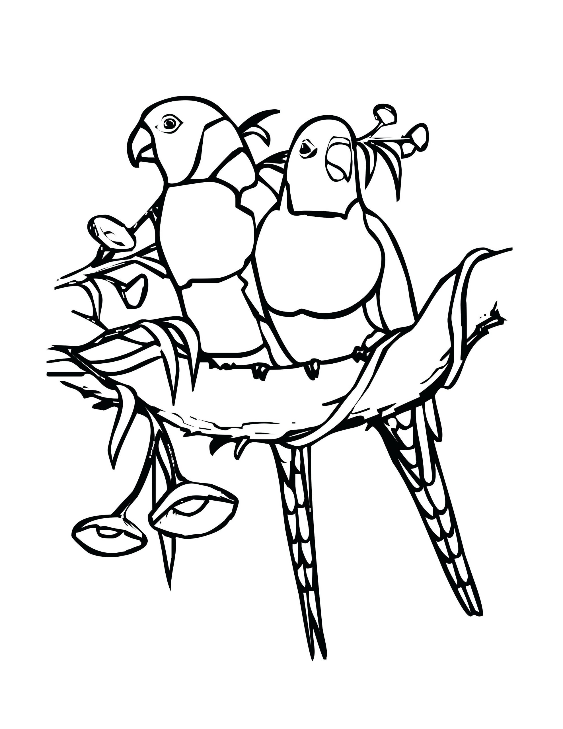 Two Parakeets Coloring Page