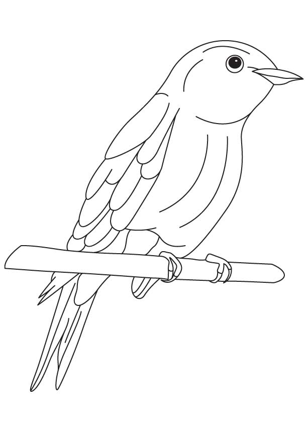 Easy Bluebird Coloring Pages