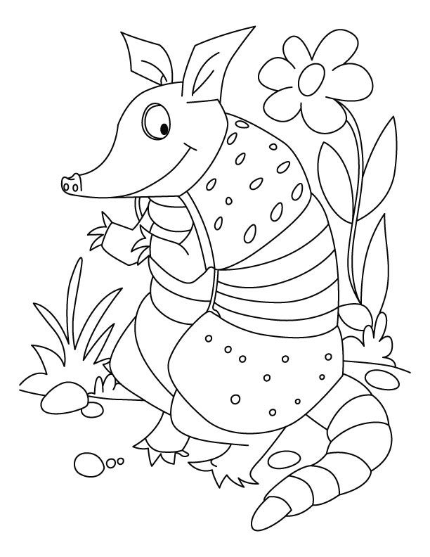Fun Cartoon Armadillo Coloring Page