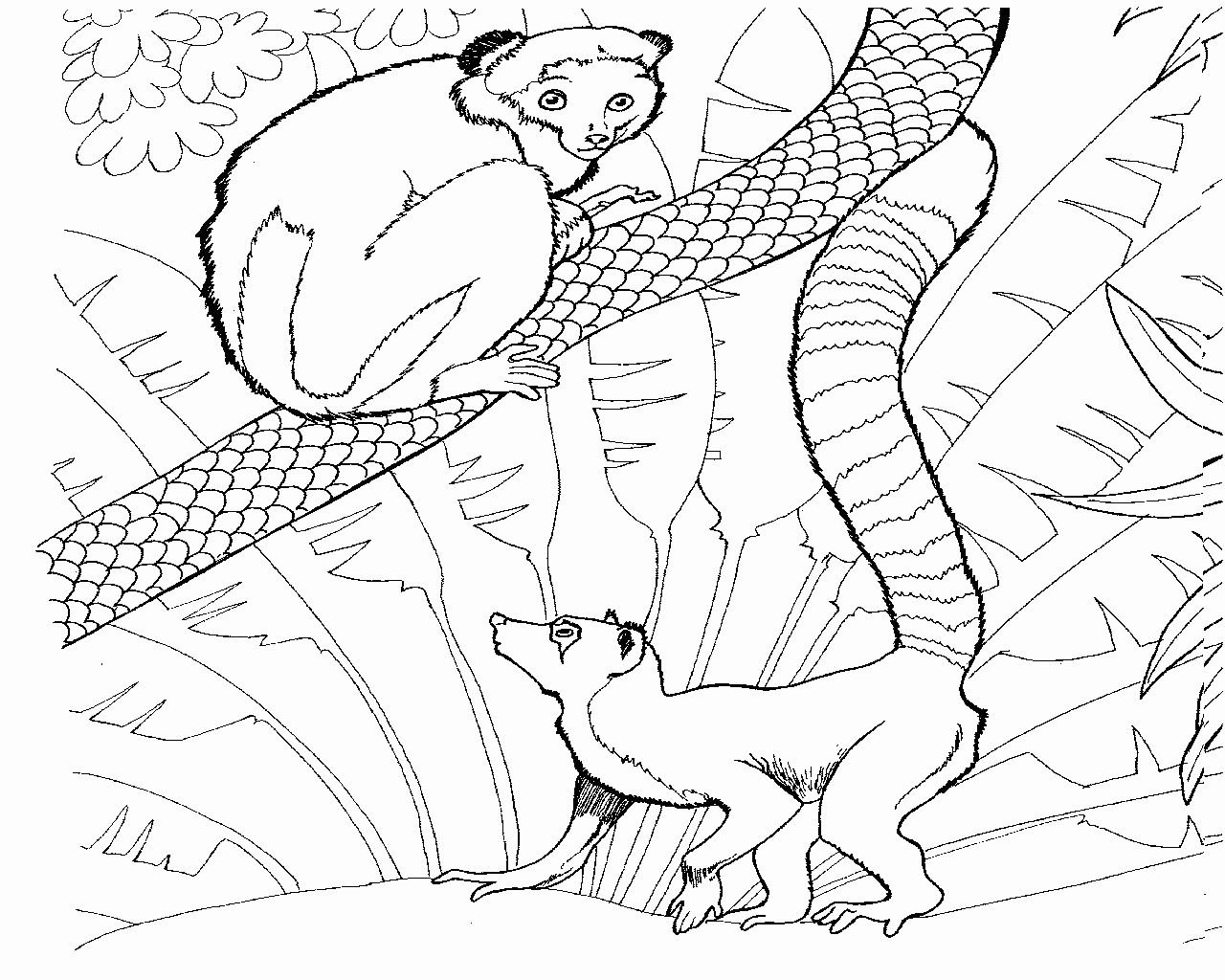 Lemur In The Jungle Coloring Pages