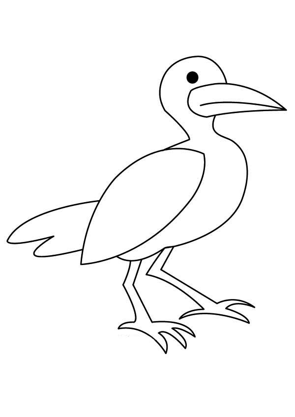 Cartoon Seagull Coloring Page