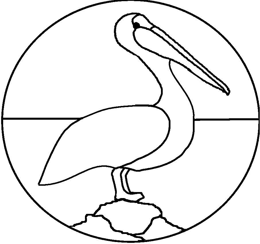 Easy Pelican Coloring Pages