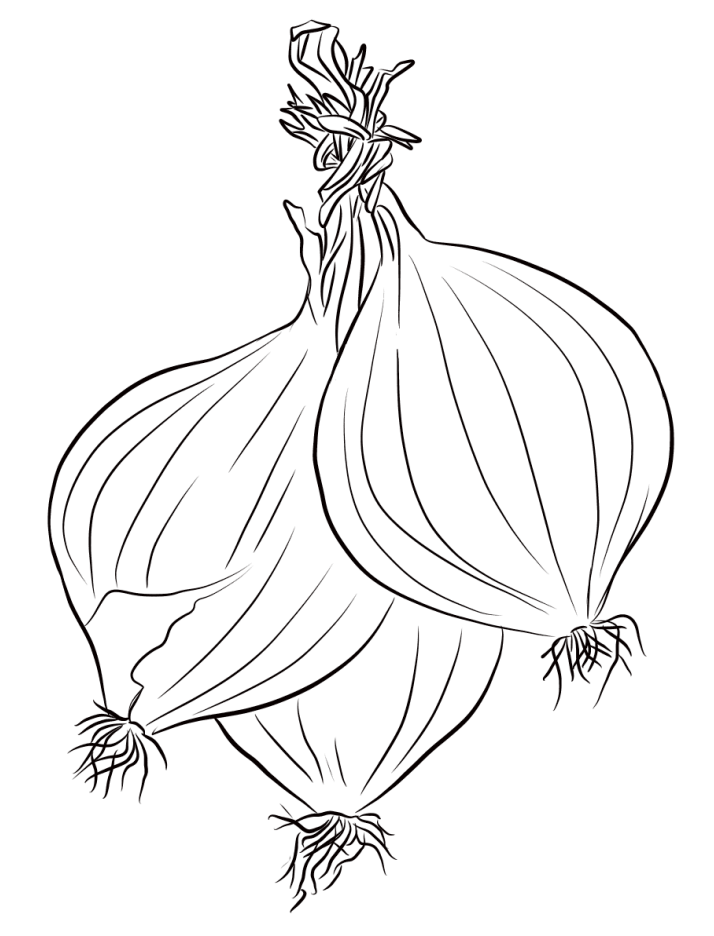 Onion Bunch Coloring Page