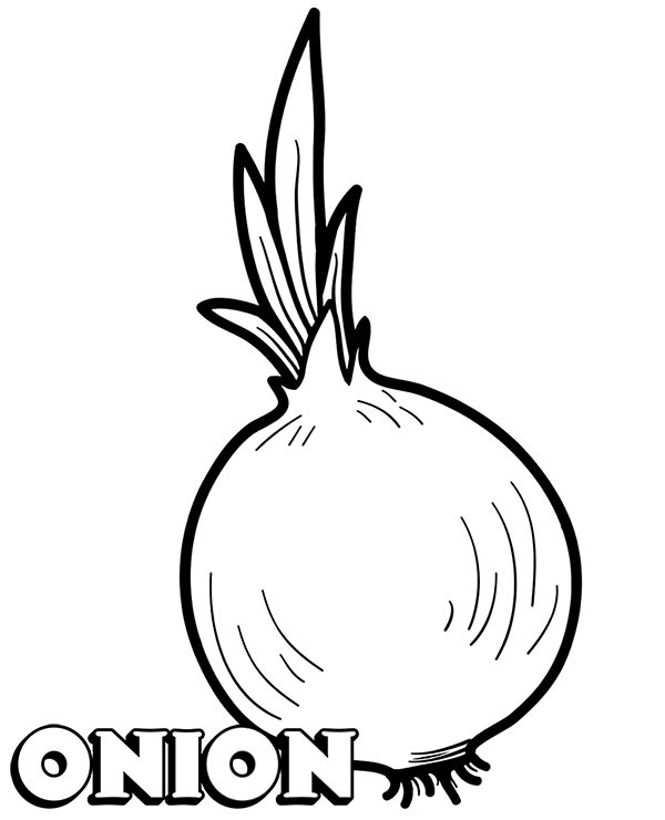 Onion Coloring Worksheet