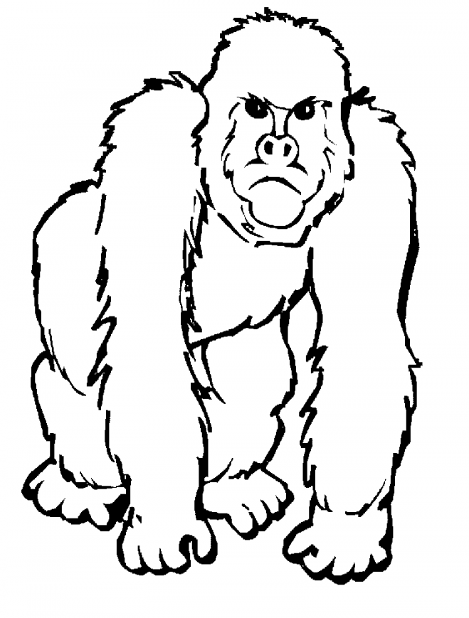 Realistic Ape Coloring Page