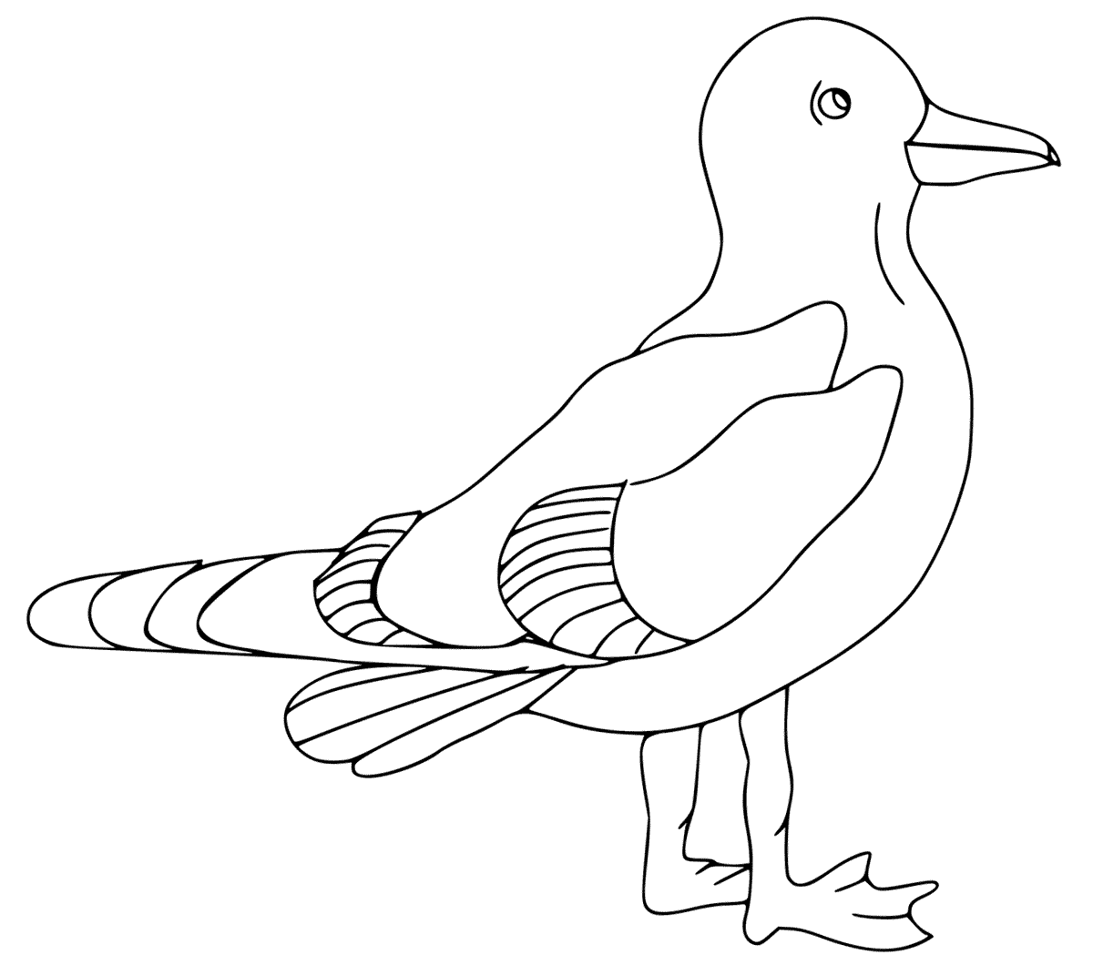 Seagull Bird Coloring Page