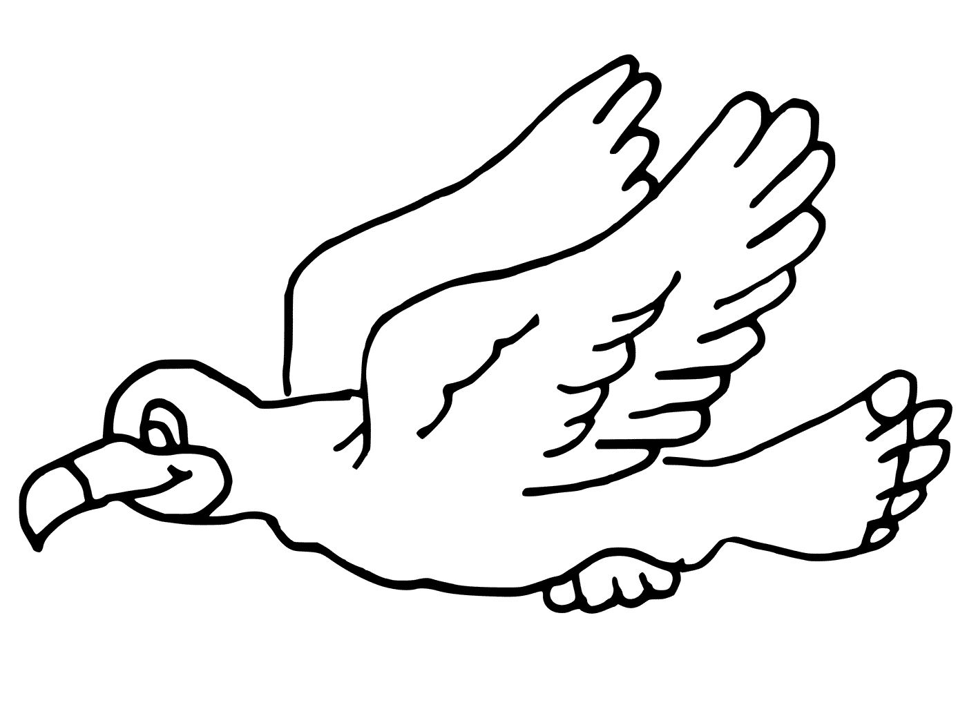 Seagull Flying Coloring Pages