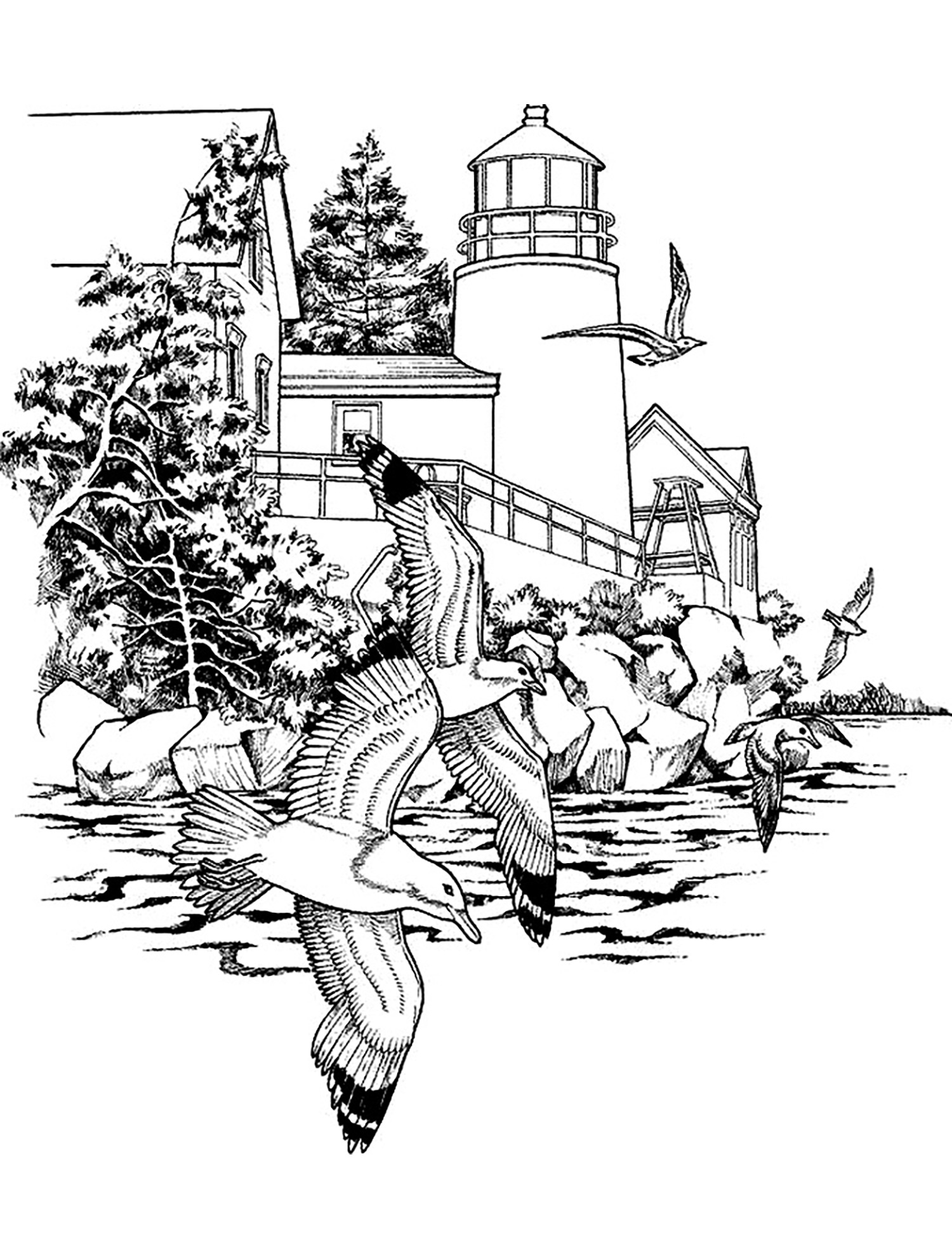 Seagull Lighthouse Scene Coloring Page