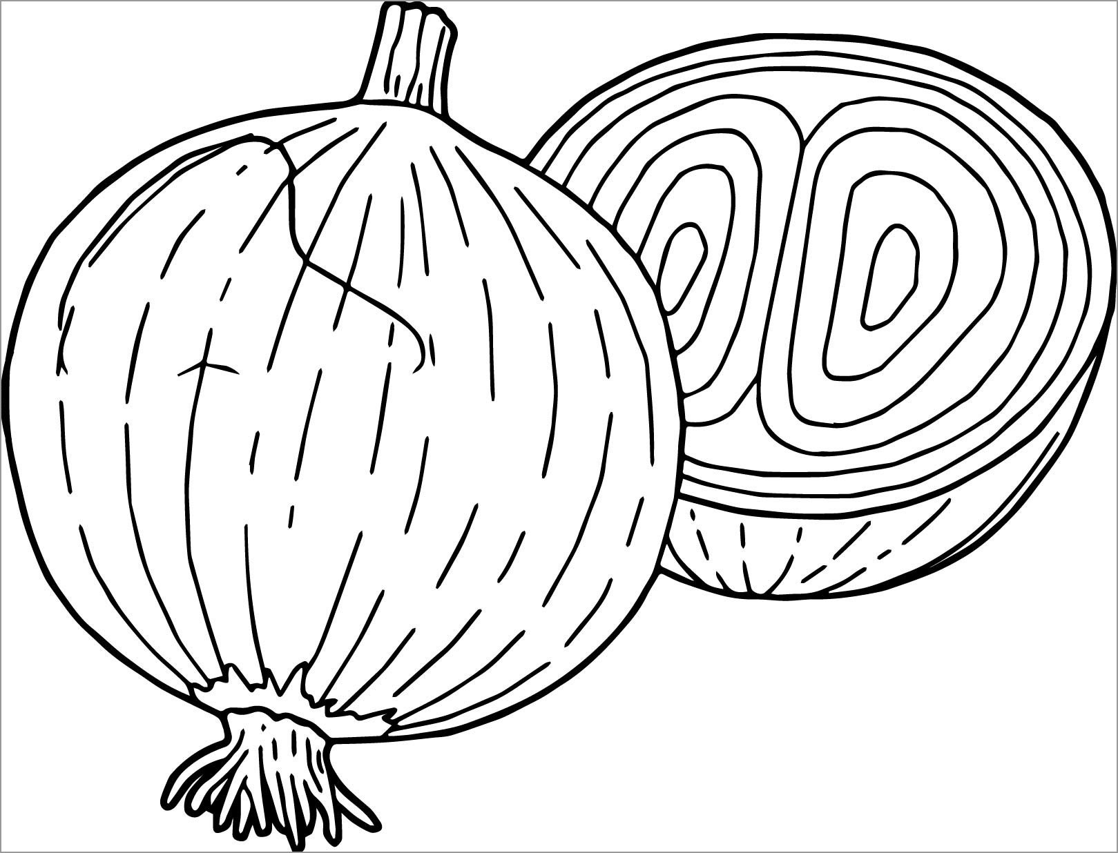 Sliced Onion Coloring Page