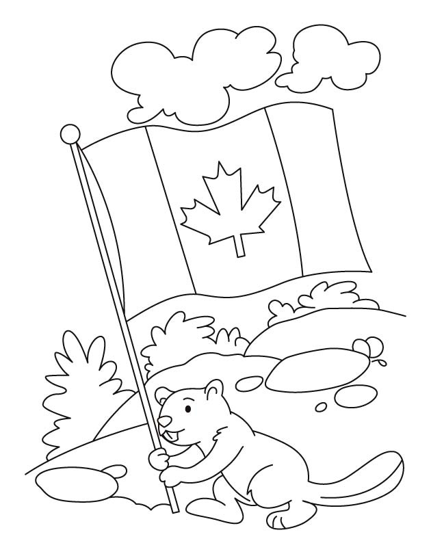 Canadian Beaver Coloring Page