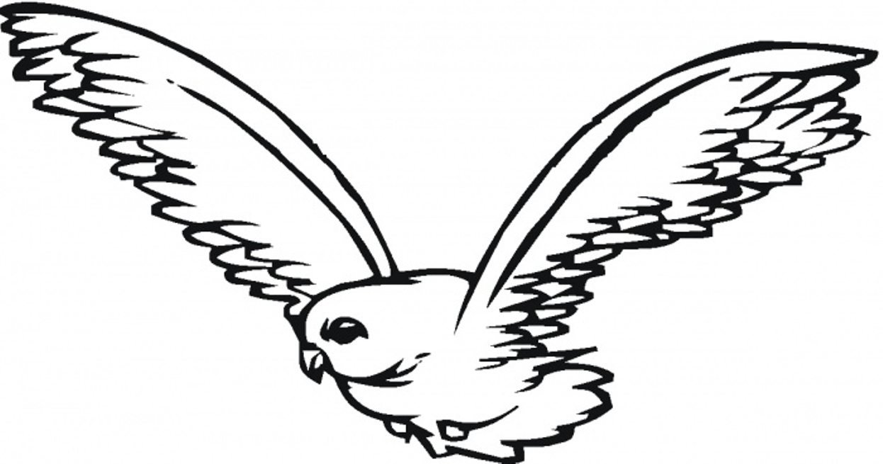 Falcon Flying Coloring Page