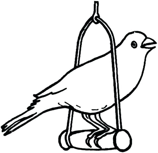 Canary On Perch Coloring Page
