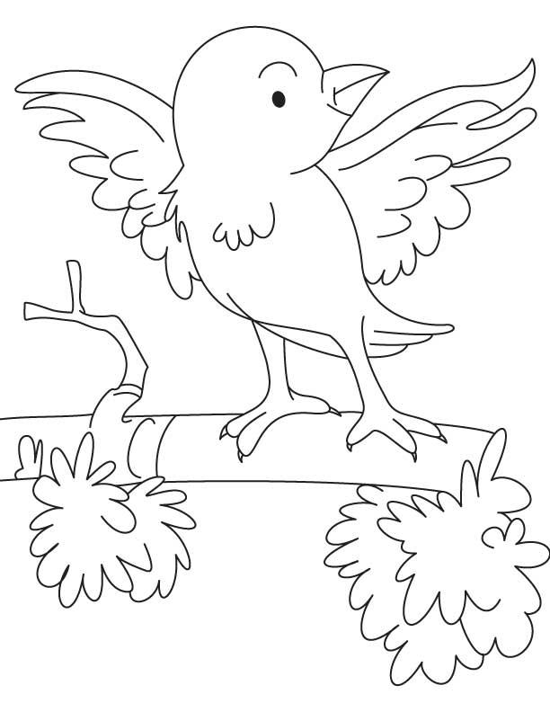 Cartoon Sparrow Coloring Page