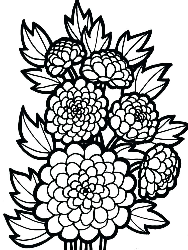 Dahlia Flowers Coloring Page