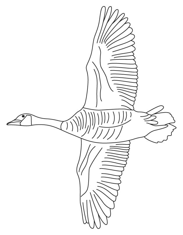 Goose In Flight Coloring Page