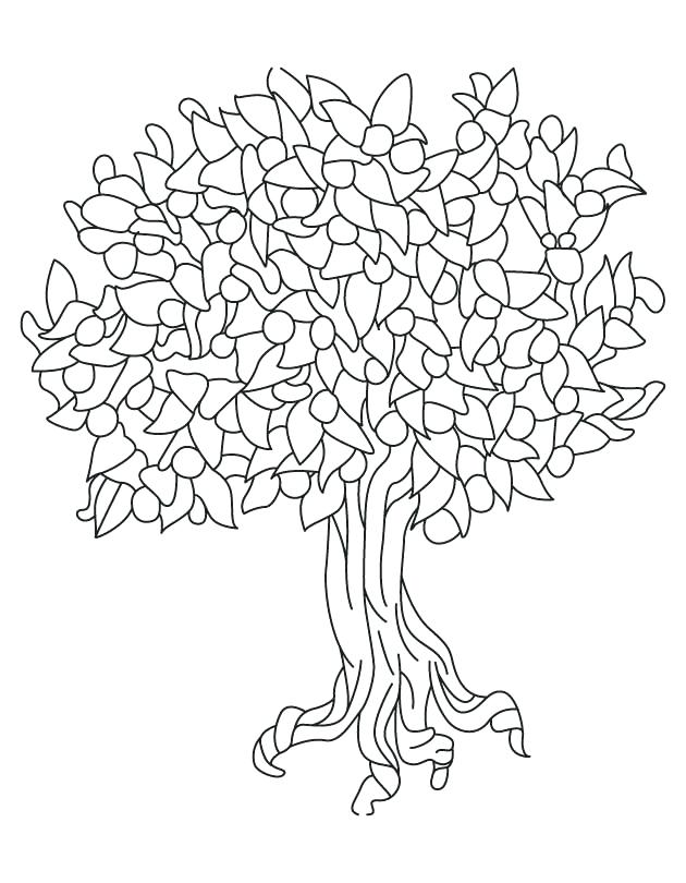 Magnolia Tree Coloring Page
