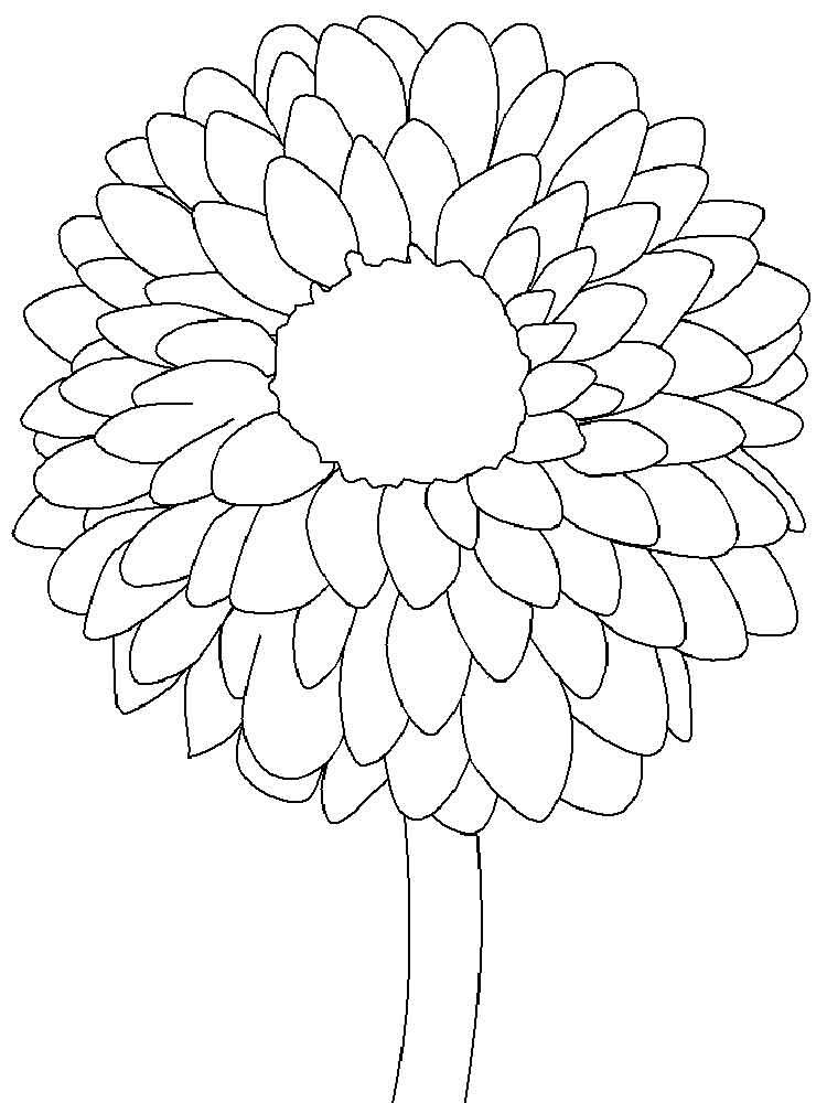 Simple Dahlia Coloring Page