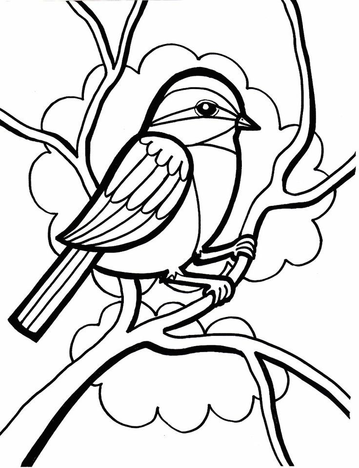 Sparrow In Tree Coloring Page