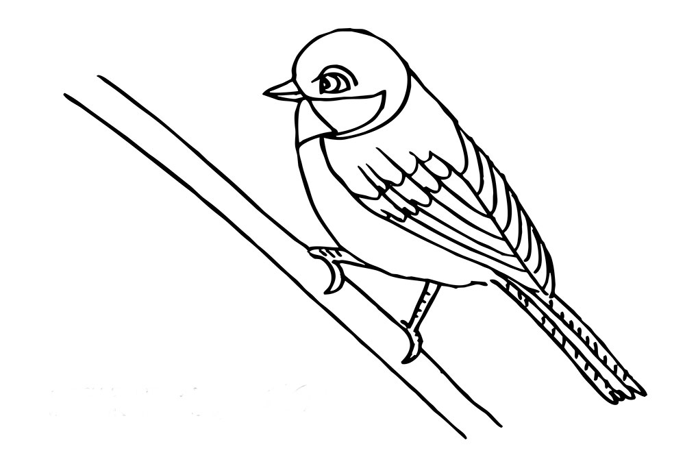 Sparrow On Branch Coloring Page