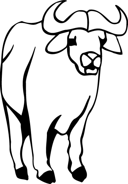 Buffalo Printable Coloring Pages
