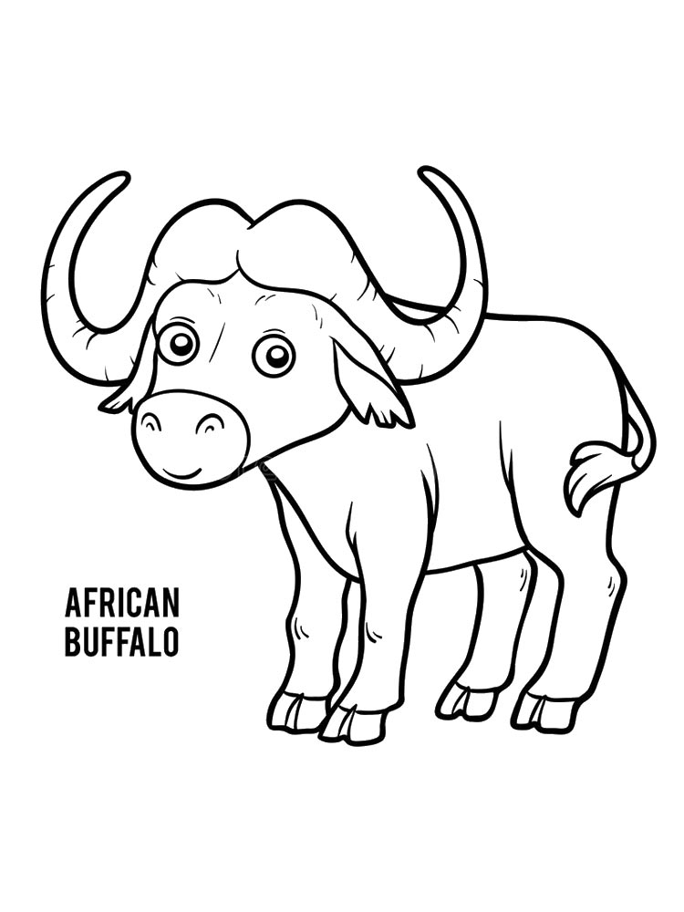 Cartoon African Buffalo Coloring Pages