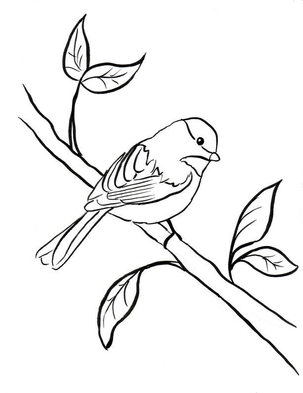 Chickadee In A Tree Coloring Pages