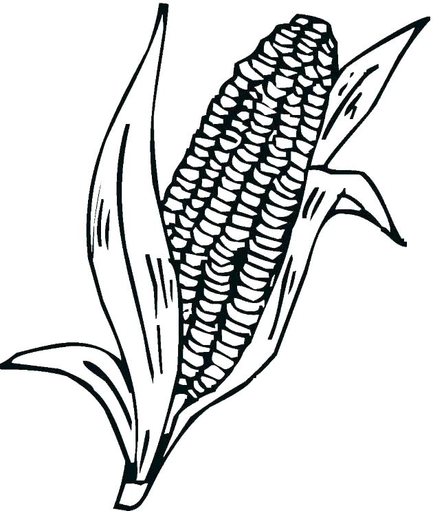Corn Printable Coloring Pages