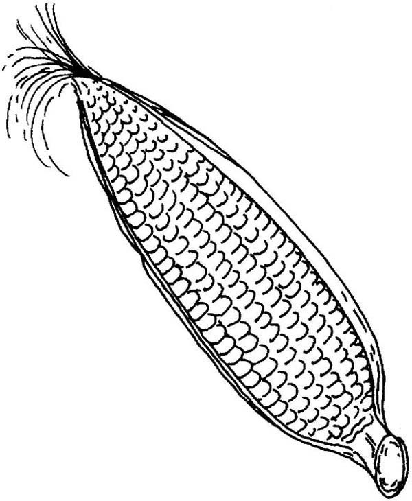 Easy Corn Coloring Pages