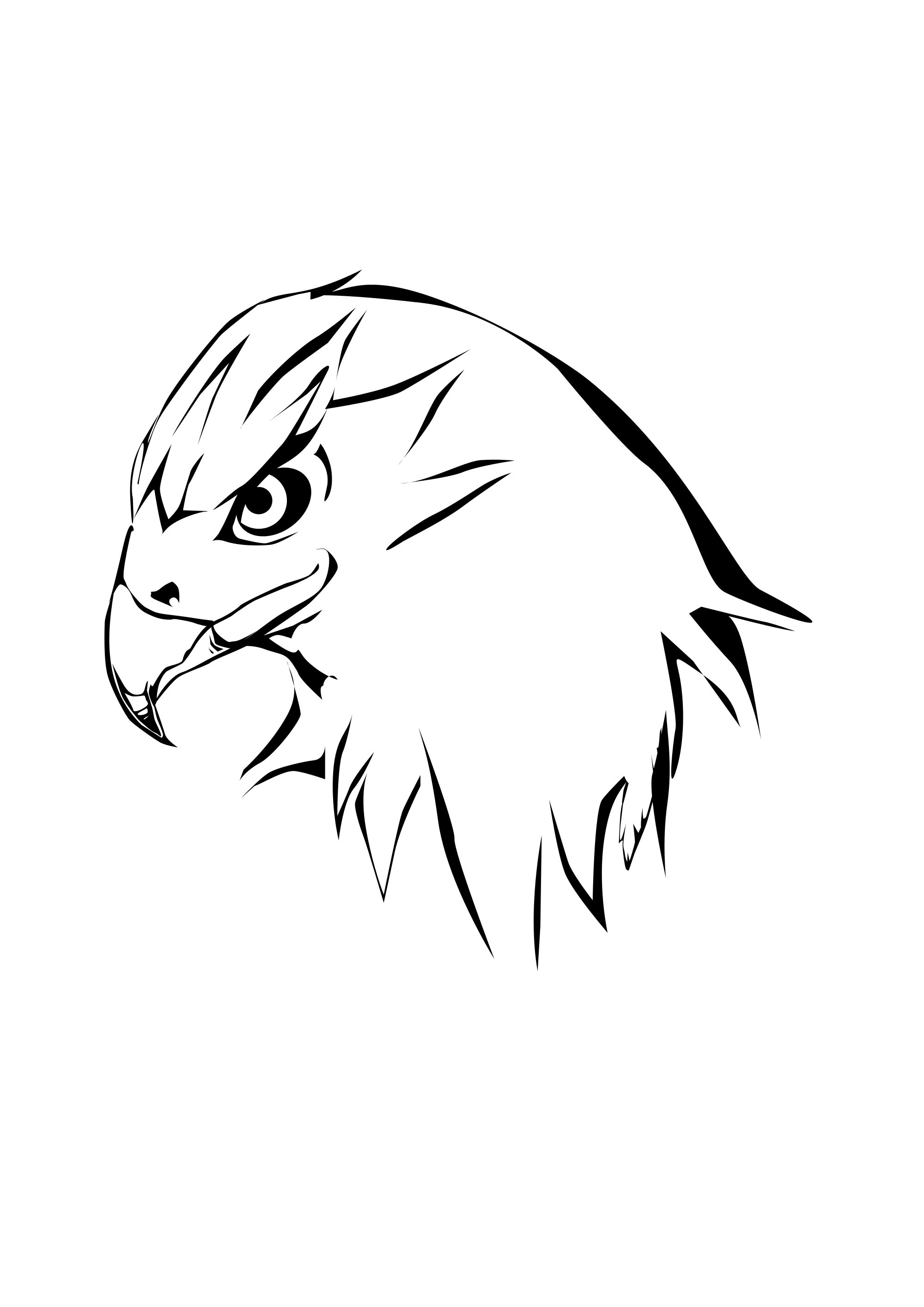 Hawk Head Coloring Pages