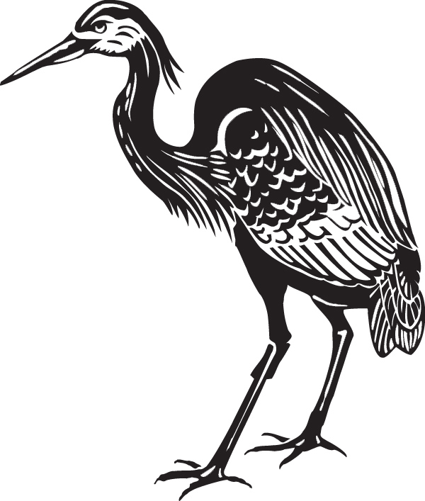 Heron Coloring Page Printable