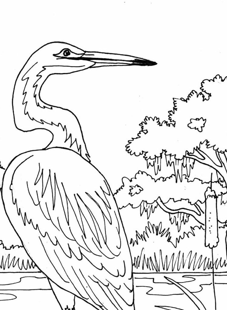 Heron Scene Coloring Page