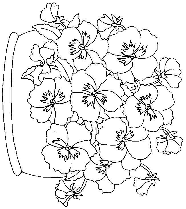 Pansy Basket Coloring Pages