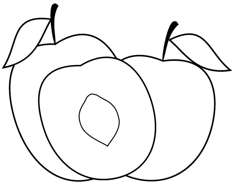 Peach Pit Coloring Pages