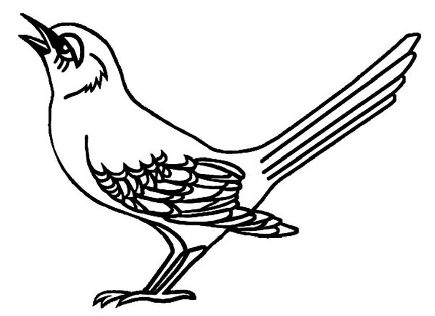 Singing Mockingbird Coloring Pages