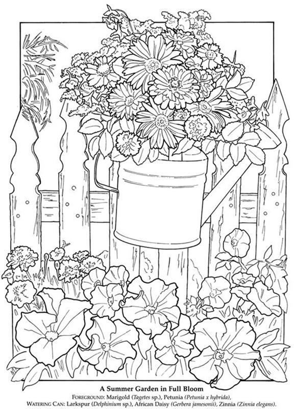 Summer Garden Coloring Sheet