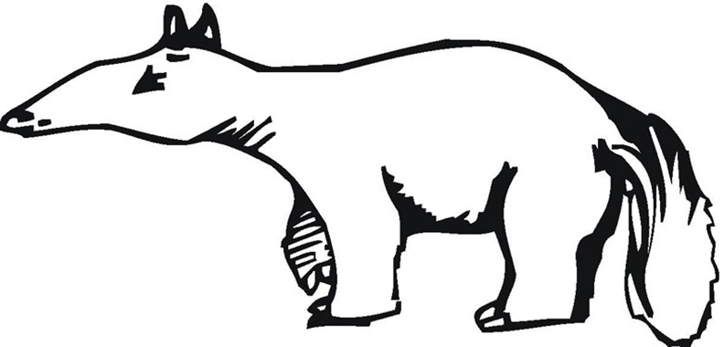 Cute Anteater Coloring Pages
