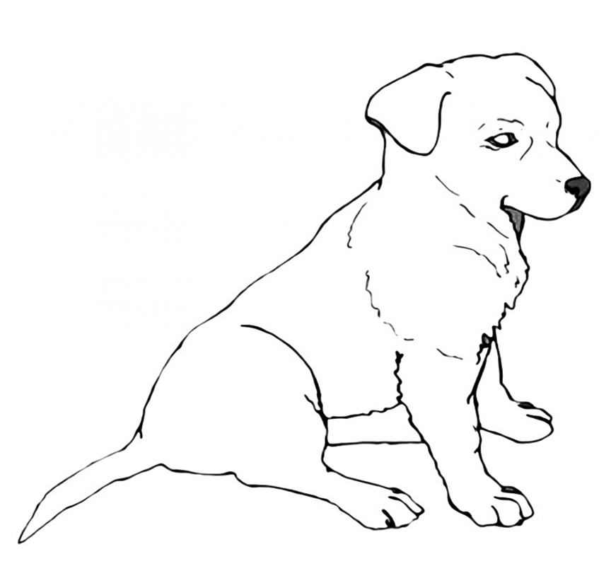 Cute Lab Puppy Coloring Page