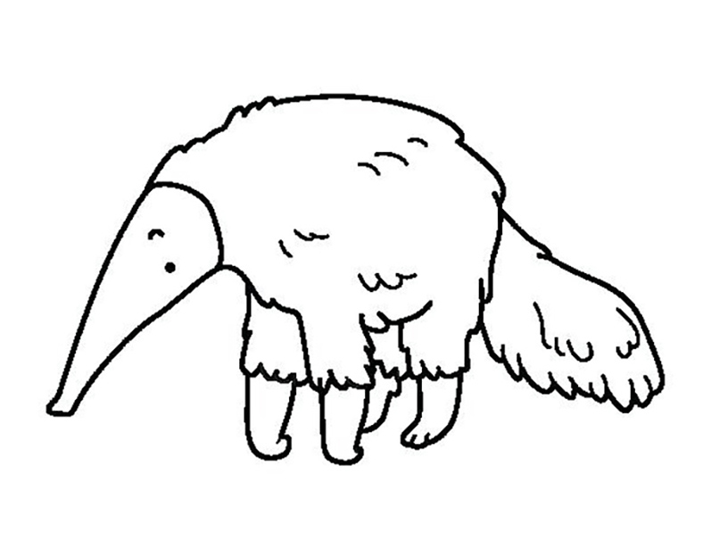 Easy Anteater Coloring Page