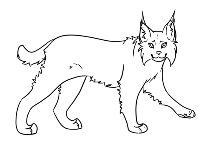 Easy Lynx Coloring Page