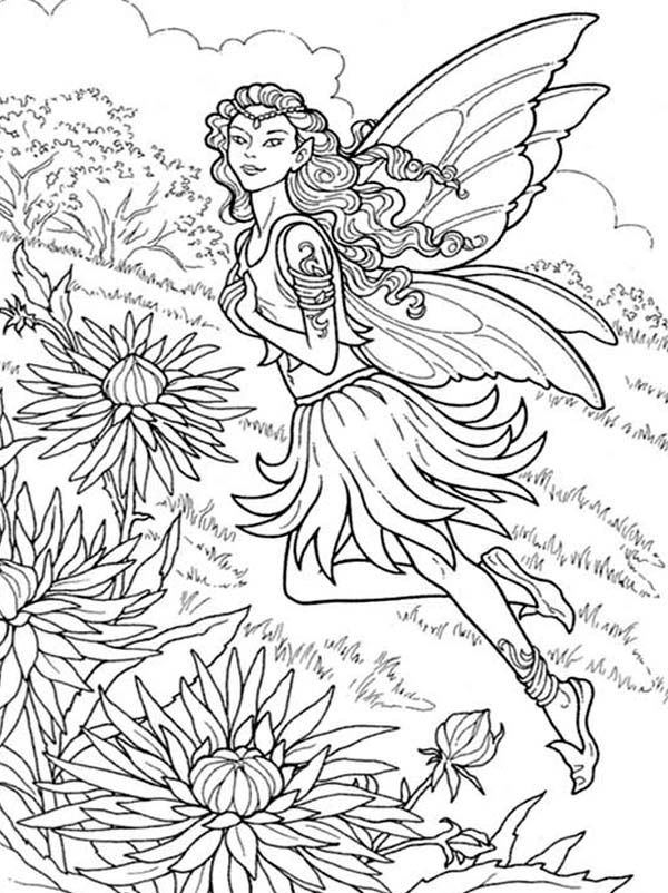 Fairy In The Chrysanthemums Coloring Pages