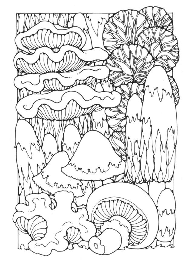 Forest Mushrooms Coloring Page
