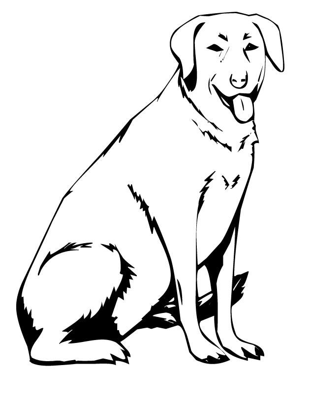 Labrador Dog Coloring Page